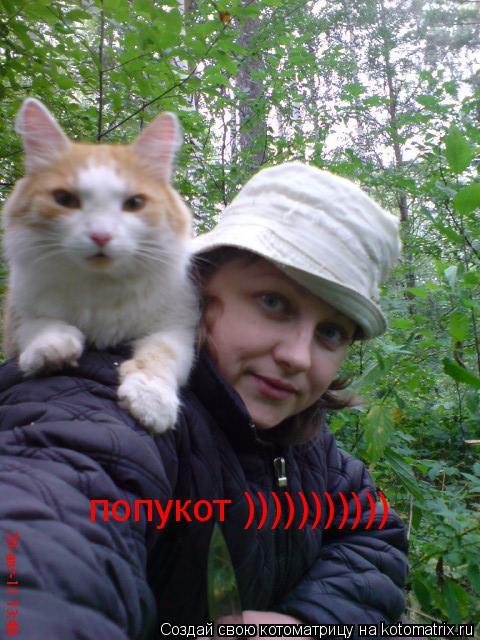 Котоматрица: попукот )))))))))))