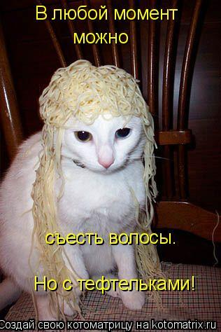 Котоматрица: В любой момент можно съесть волосы. Но с тефтельками!