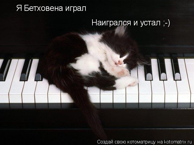 Котоматрица: Я Бетховена играл Наигрался и устал ;-)
