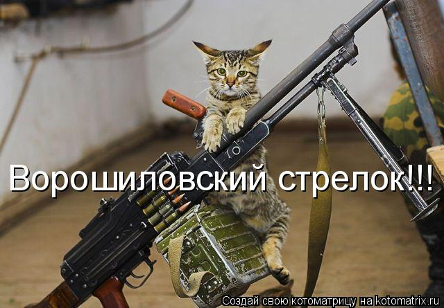 Котоматрица: Ворошиловский стрелок!!!