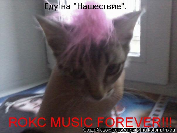 "Котоматрица: Еду на ""Нашествие"". ROKC MUSIC FOREVER!!!"