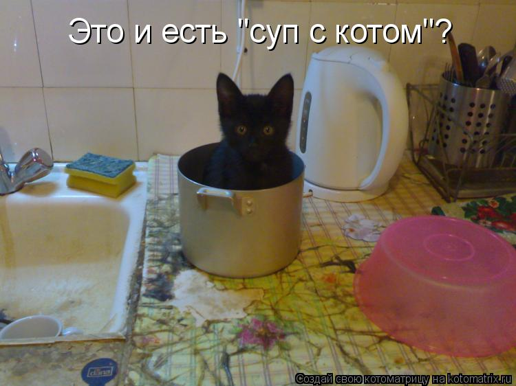 http://kotomatrix.ru/images/lolz/2010/10/31/722391.jpg