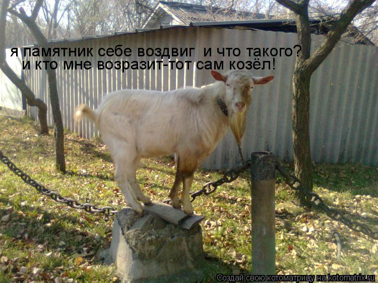 Котоматрица: я памятник себе воздвиг  и что такого? и кто мне возразит-тот сам козёл!