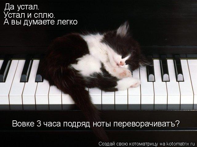 Котоматрица: Да устал.  Устал и сплю. А вы думаете легко   Вовке 3 часа подряд ноты переворачиватъ?