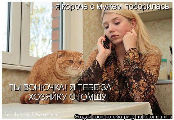 Котоматрица: я,короче с мужем посорилась ТЫ ВОНЮЧКА! Я ТЕБЕ ЗА   ХОЗЯЙКУ ОТОМЩУ!