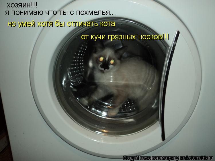 Котоматрица: хозяин!!! я понимаю что ты с похмелья... но умей хотя бы отличать кота  от кучи грязных носков!!!
