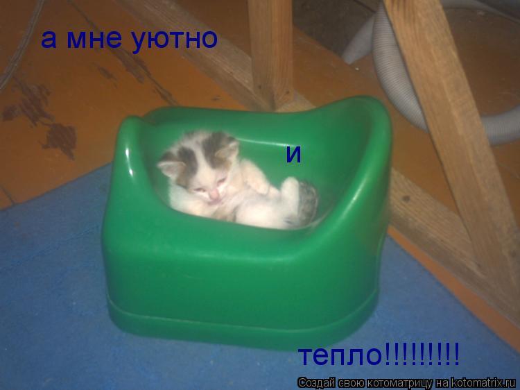 Котоматрица: а мне уютно и тепло!!!!!!!!!