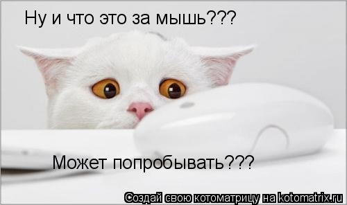 Котоматрица: Ну и что это за мышь??? Может попробывать???