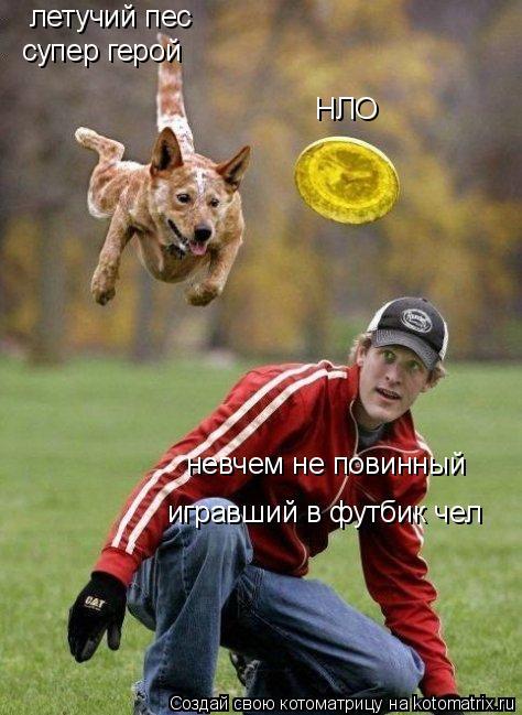 Котоматрица: НЛО летучий пес  супер герой  невчем не повинный  игравший в футбик чел