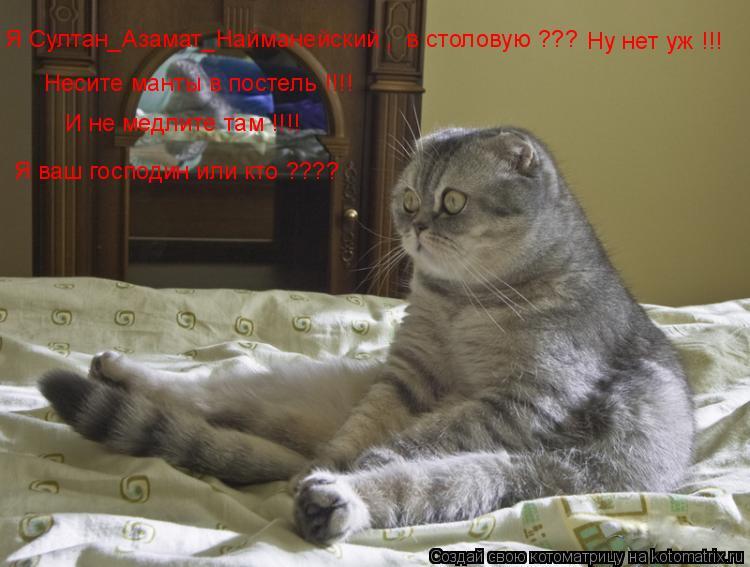 Котоматрица: Я Султан_Азамат_Найманейский ,  в столовую ???   Ну нет уж !!! Несите манты в постель !!!! И не медлите там !!!! Я ваш господин или кто ????