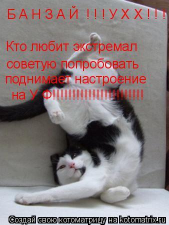 Котоматрица: Б А Н З А Й  ! ! ! У Х Х ! ! ! Кто любит экстремал советую попробовать поднимает настроение на У Ф!!!!!!!!!!!!!!!!!!!!!!!