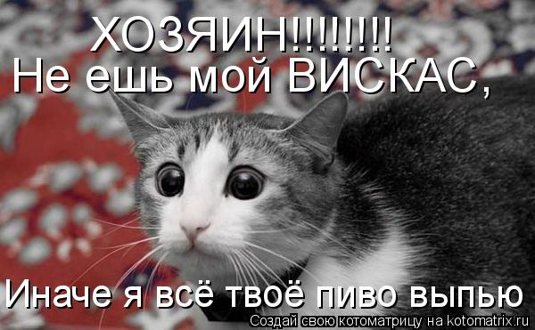 Котоматрица: ХОЗЯИН!!!!!!!! Не ешь мой ВИСКАС, Иначе я всё твоё пиво выпью