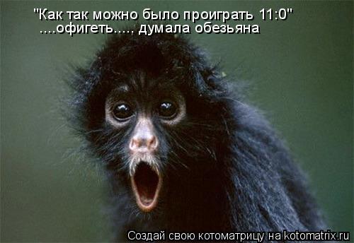 """Котоматрица: """"Как так можно было проиграть 11:0"""" ....офигеть..... думала обезьяна"""