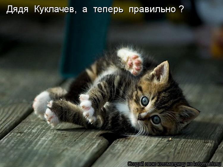 Котоматрица: Дядя  Куклачев,  а  теперь  правильно ?