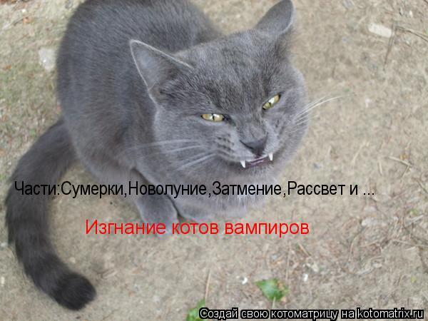 Котоматрица: Части:Сумерки,Новолуние,Затмение,Рассвет и ... Изгнание котов вампиров