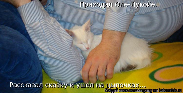 Котоматрица: Приходил Оле-Лукойе.  Рассказал сказку и ушел на цыпочках...
