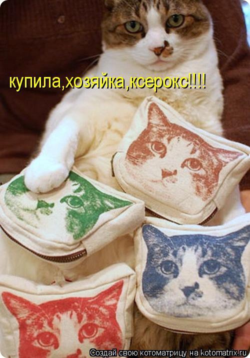 Котоматрица: купила,хозяйка,ксерокс!!!!