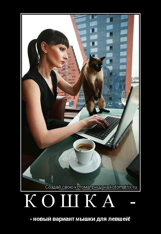 Котоматрица: КОШКА - - новый вариант мышки для левшей!