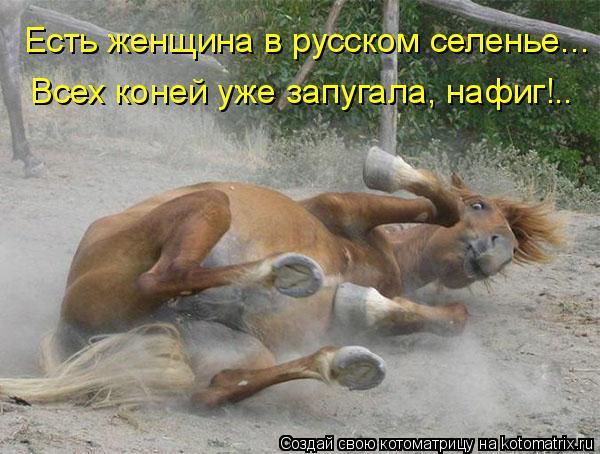 Котоматрица: Есть женщина в русском селенье... Всех коней уже запугала, нафиг!..