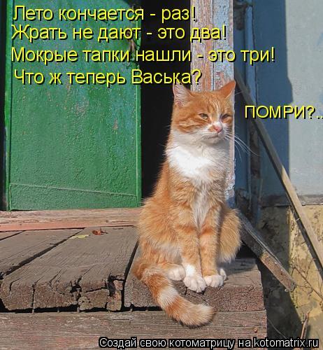 Котоматрица: Лето кончается - раз! Жрать не дают - это два! Мокрые тапки нашли - это три! ПОМРИ?... Что ж теперь Васька?