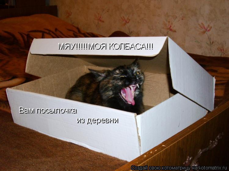 Котоматрица: Вам посылочка из деревни МЯУ!!!!!МОЯ КОЛБАСА!!!