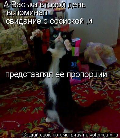 Котоматрица: А Васька второй день  вспоминал свидание с сосиской ,и представлял её пропорции