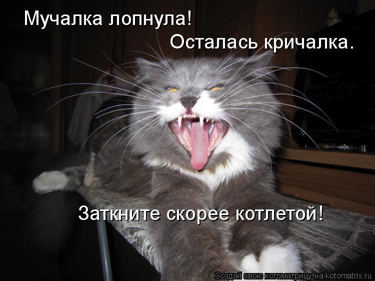 Котоматрица: Мучалка лопнула! Осталась кричалка. Заткните скорее котлетой!