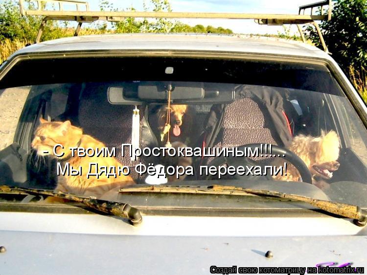 Котоматрица: - С твоим Простоквашиным!!!... Мы Дядю Фёдора переехали!