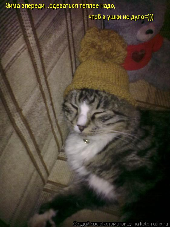 Котоматрица: Зима впереди...одеваться теплее надо, чтоб в ушки не дуло=)))