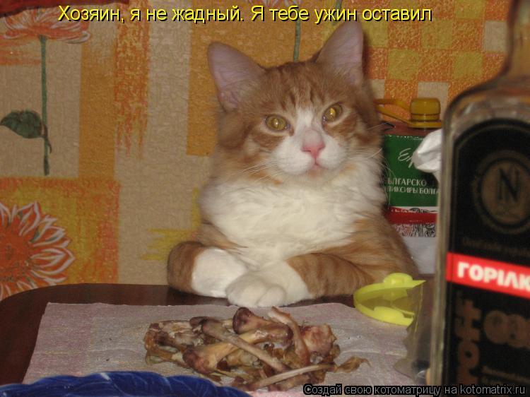 Котоматрица: Хозяин, я не жадный. Я тебе ужин оставил