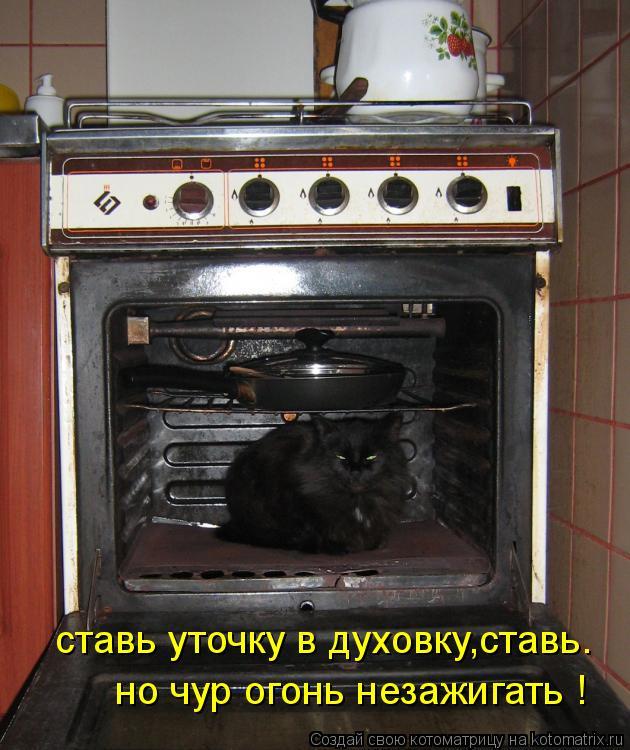 Котоматрица: ставь уточку в духовку,ставь. но чур огонь незажигать !