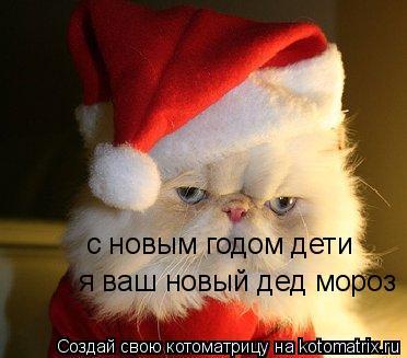 Котоматрица: с новым годом дети я ваш новый дед мороз