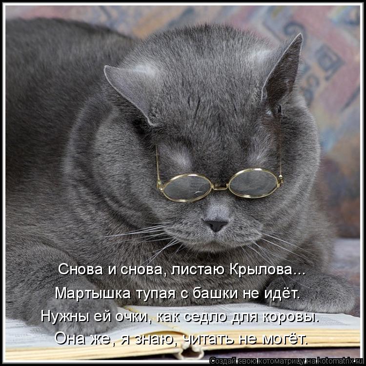 Котоматрица: Мартышка тупая с башки не идёт. Нужны ей очки, как седло для коровы. Она же, я знаю, читать не могёт. Снова и снова, листаю Крылова...