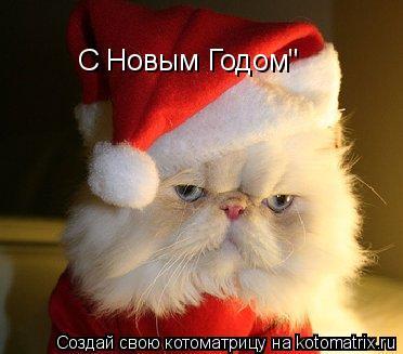 """Котоматрица: С Новым Годом"""""""