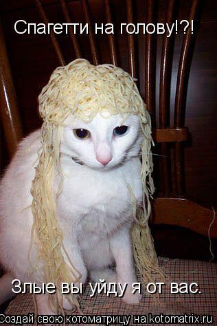 Котоматрица: Злые вы уйду я от вас. Спагетти на голову!?!