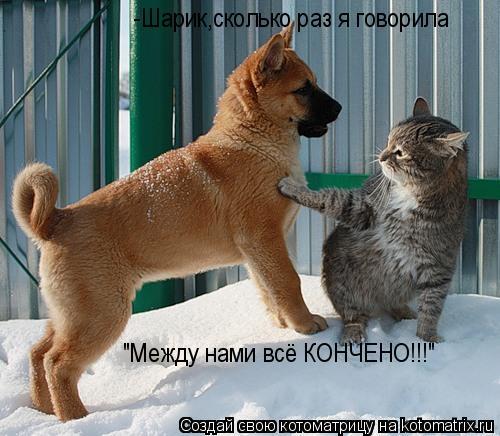 """Котоматрица: -Шарик,сколько раз я говорила """"Между нами всё КОНЧЕНО!!!"""""""