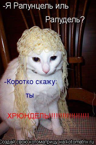 Котоматрица: -Я Рапунцель иль  Рапудель? -Коротко скажу: ты  ХРЮНДЕЛЬ!!!!!!!!!!!!!!!!!!