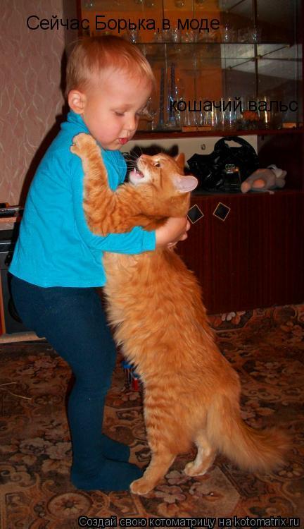Котоматрица: Сейчас Борька,в моде кошачий вальс