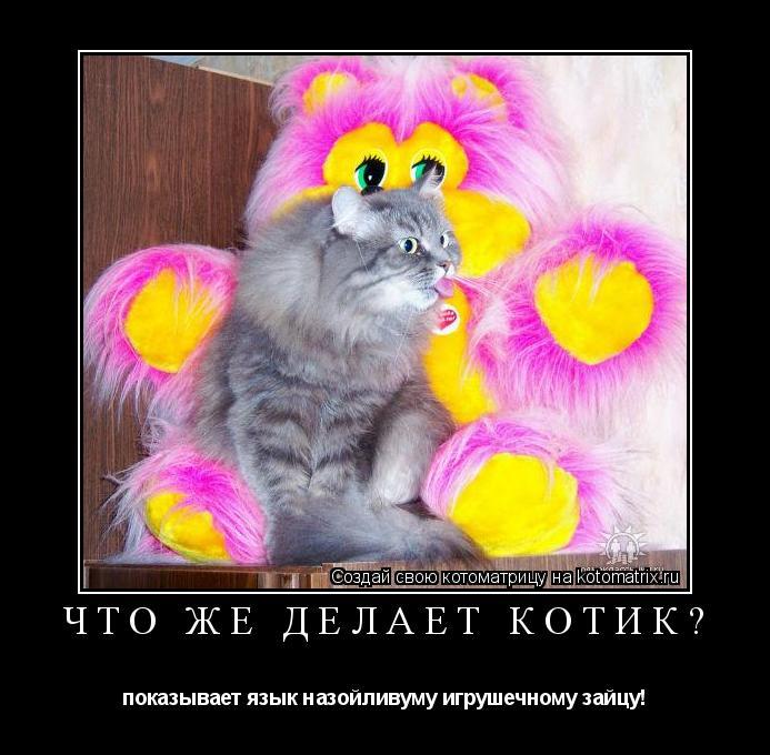 Котоматрица: что же делает котик? показывает язык назойливуму игрушечному зайцу!