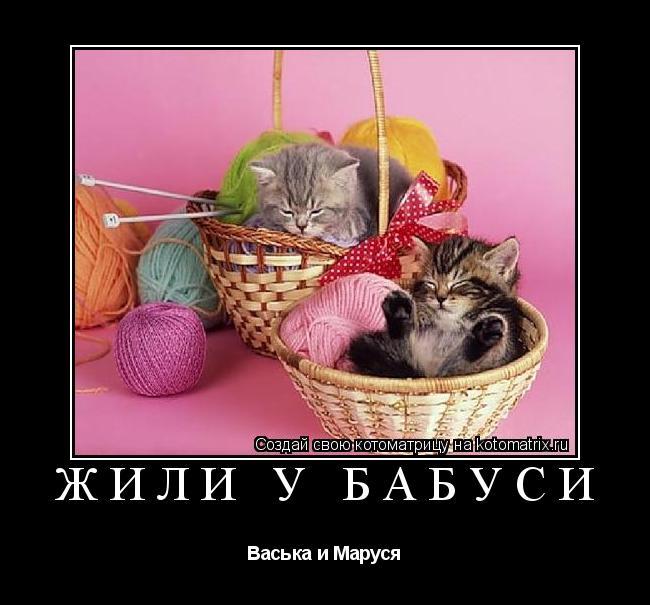 Котоматрица: Жили у бабуси Васька и Маруся