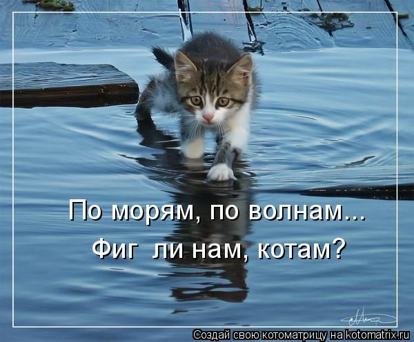Котоматрица: По морям, по волнам... Фиг  ли нам, котам?