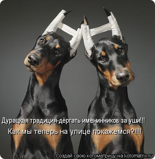 Котоматрица: Дурацкая традиция-дёргать именинников за уши!!! Как мы теперь на улице покажемся?!!!