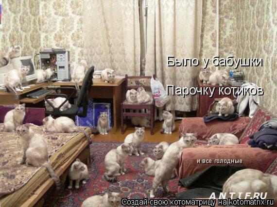 Котоматрица: Было у бабушки Парочку котиков и все голодные
