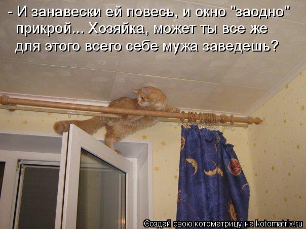 """- И занавески ей повесь, и окно """"заодно""""  прикрой... Хозяйка, может ты все же для этого всего себе мужа заведешь?"""