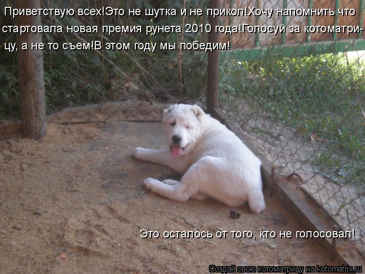 Котоматрица: Приветствую всех!Это не шутка и не прикол!Хочу напомнить что стартовала новая премия рунета 2010 года!Голосуй за котоматри- цу, а не то съем!В