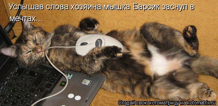 Котоматрица: Услышав слова хозяина мышка Барсик заснул в мечтах...