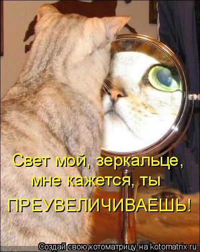 Котоматрица: Свет мой, зеркальце, мне кажется, ты ПРЕУВЕЛИЧИВАЕШЬ!