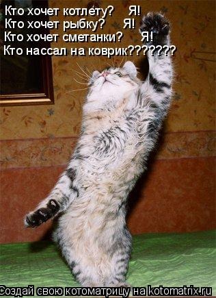 Котоматрица: Кто хочет котлету?    Я! Кто хочет рыбку?     Я! Кто хочет сметанки?     Я! Кто нассал на коврик???????
