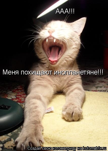 Котоматрица: ААА!!! Меня похищают инопланетяне!!!