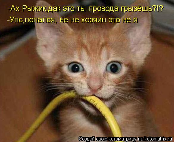 Котоматрица: -Ах Рыжик,дак это ты провода грызёшь?!? -Упс,попался, не не хозяин это не я